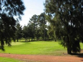 View profile: Any One For Golf